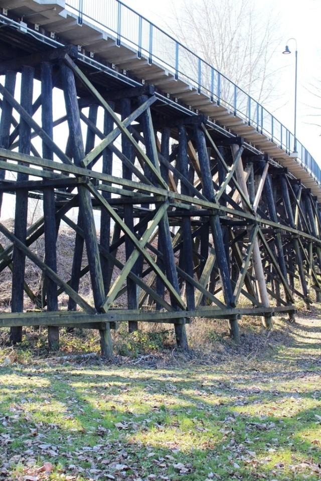 Walking Bridge 1