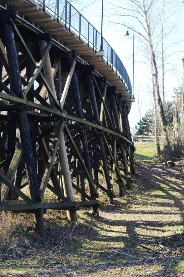 Walking Bridge 2
