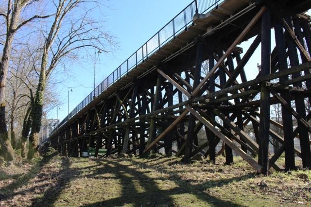 Walking Bridge 4